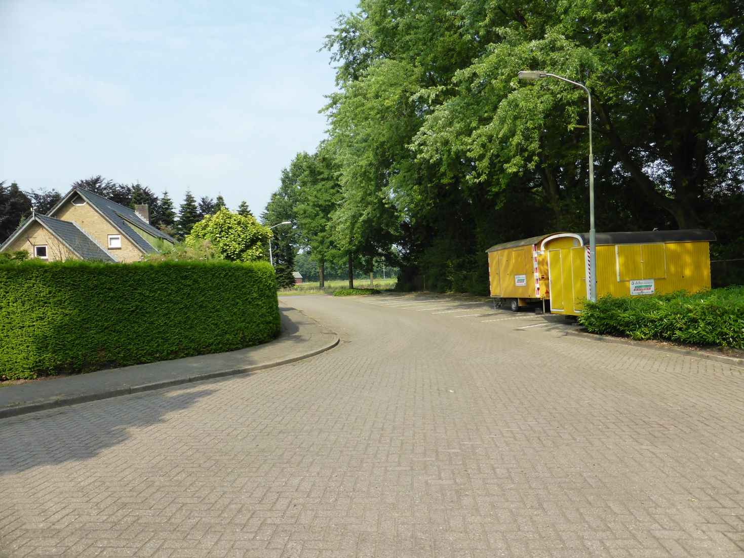 http://bomenbelang.nl/wp-content/uploads/2013/10/Thuja-5-Hengeloo.jpg