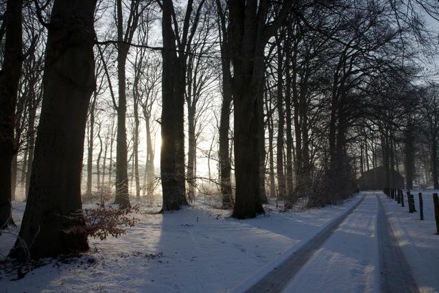 winters beeld in de omgeving van Vorden (foto: Hans Thijssen)