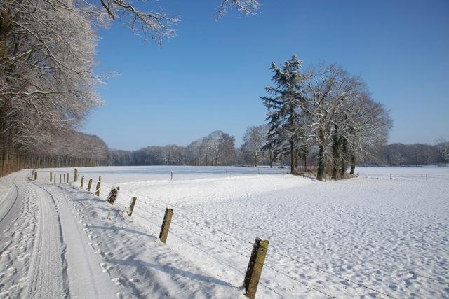 Winter in de Achterhoek (foto: Hans Thijssen)