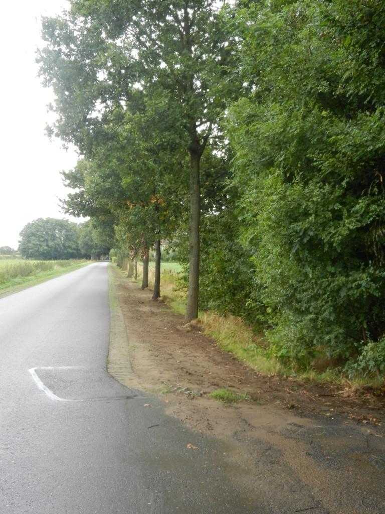 In het buitengebied van Hummelo werd in september 2013 wel erg rigoreus de berm gemaaid.