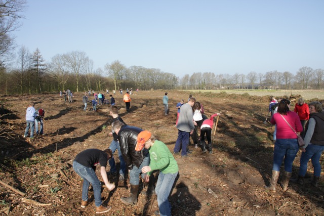 Zo'n 45 leerlingen van groep 8 van basisschool het Hoge in Vorden plantten enkele honderden jonge eikjes, berken en wilgen aan de Bekmansdijk (foto: Hans Thijssen, Vereniging Bomenbelang).