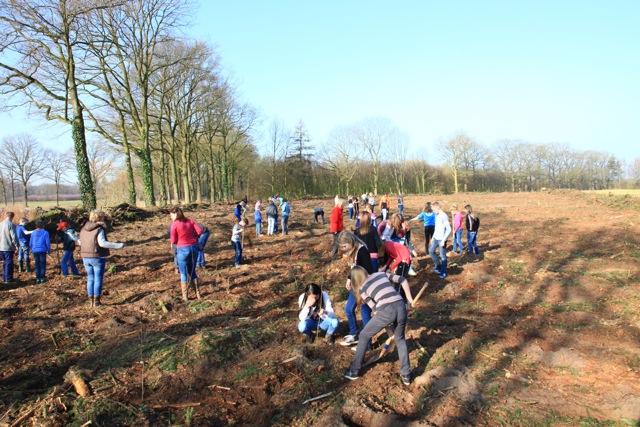 Boomplantdag 2014 (Het Hoge) (6)