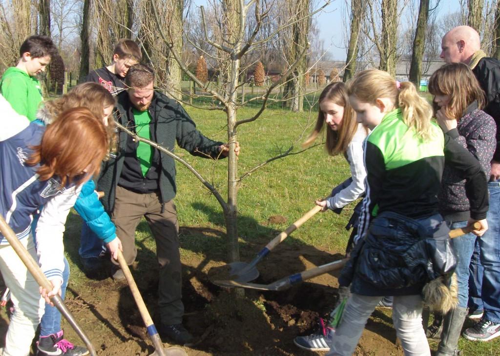 Boomplantdag 2014 (Piersonschool Hengelo) (2)