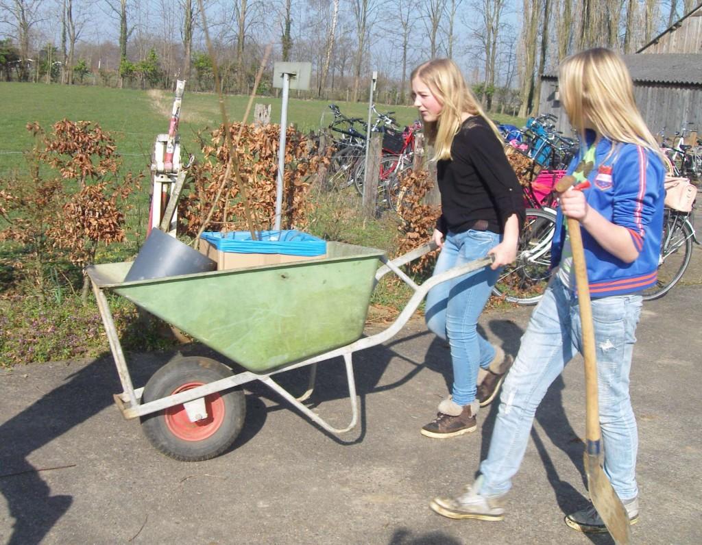 Zo'n 40 leerlingen van groep 8 van de Piersonschool in Hengelo verplantten bomen op camping de Nachtegaal aan de Lankhorsterweg.