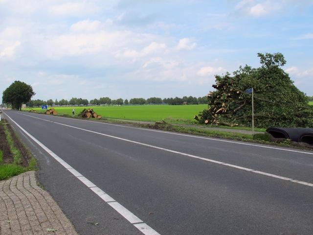 De kap van de bomen ten zuiden van Hummelo maakt deel uit van een grootschaligere kap langs de gehele N314 (foto: Hans Thijssen (Vereniging Bomenbelang).