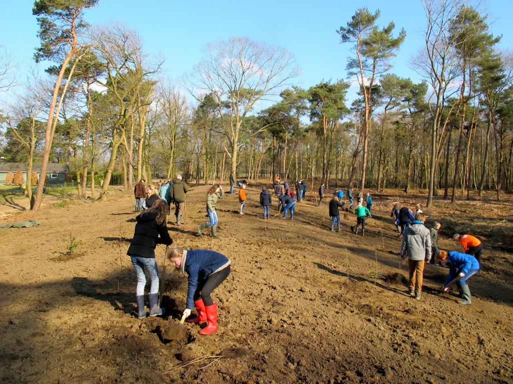 Leerlingen van de groepen 8 van de Dorpsschool en De Vordering uit Vorden plantten achter landgoed 't Zelle op de hoek Ruurloseweg - Roessinks Drijfdijk zo'n  2000 boompjes op een half hectare grond (foto: Maria Haanappel).