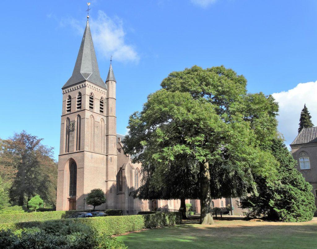 Naast de Willibrorduskerk in Wichmond staan een monumentale treurbeuk en een tamme kastanje.